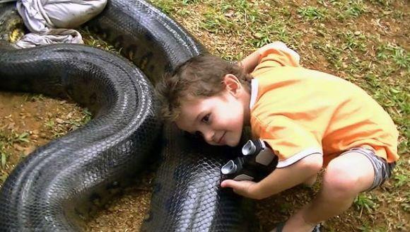 A capturat un şarpe de 5 metri şi l-a ţinut captiv în cadă - VIDEO