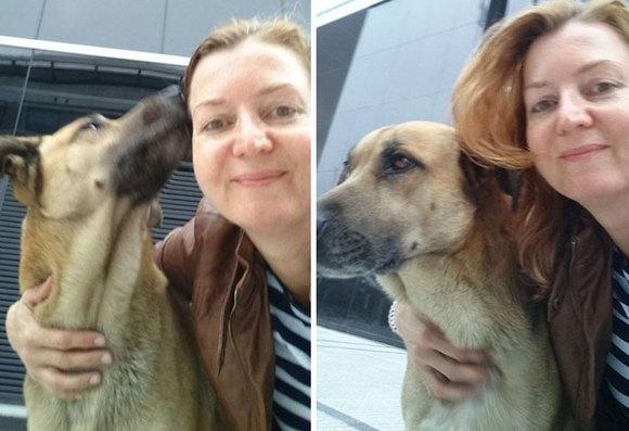O însoţitoare de zbor a adoptat un câine al străzii care a aşteptat-o şase luni în faţa hotelului ei din Buenos Aires (Galerie Foto)