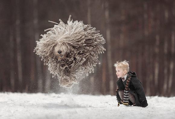 """Băiatul şi uriaşul """"Mop"""": fabuloasele imagini ale prieteniei dintre un copil şi câinele lui uriaş (Galerie Foto)"""