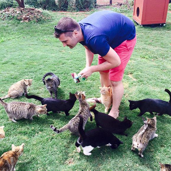 Sanctuarul pisicilor – locul în care poți mângâia 500 de feline. Unde se află el – (Galerie Foto) și Video