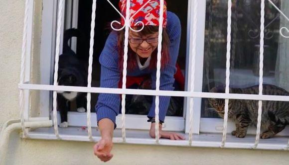 O femeie a construit o scară până la fereastra casei sale, pentru ca mâţele străzii să poată urca la ea în casă (Galerie foto)
