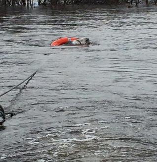 Măgarul care zâmbeşte cu gura până la urechi, după ce a fost salvat de la indundaţii. Fotografia a devenit virală (Galerie Foto)