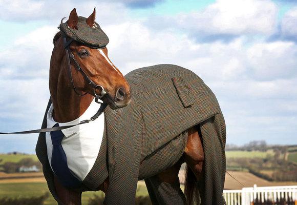 Primul cal din lume care poartă costum creat de designer arată superb (Galerie Foto)