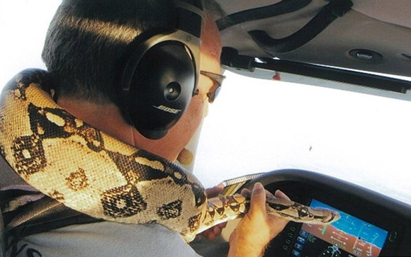 Bărbatul care transportă voluntar animale cu propriul avion, pentru a le oferi un trai mai bun (Galerie Foto)