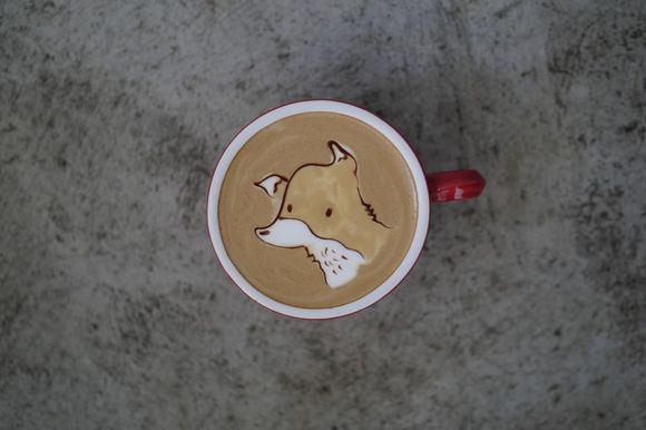 Artă și cafea – cele mai tari desene cu animăluțe, într-o ceașcă de cafea (Galerie Foto)
