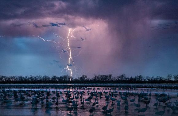 Cele mai bune imagini ale anului, nominalizate de National Geographic . (Galerie foto) zguduitoare