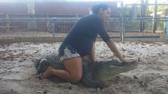 Gravidă în opt luni, o femeie se luptă cu aligatorii - Galerie Foto