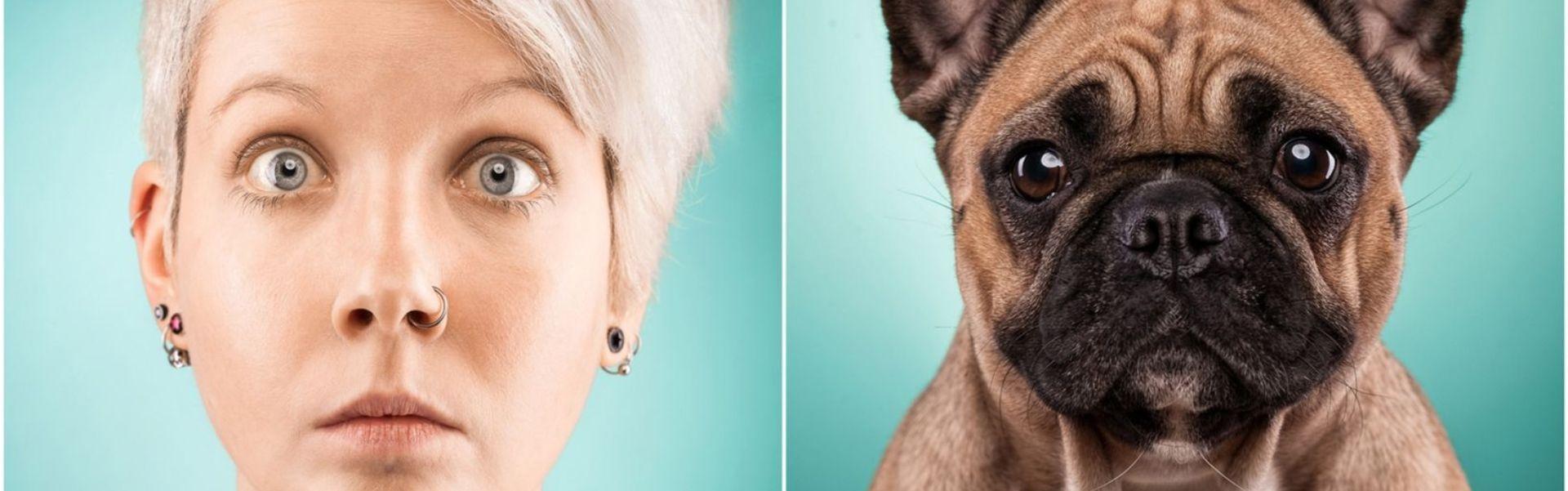 """Celălalt """"tu"""": 25 de câini care arată exact ca stăpânii lor - Galerie Foto"""
