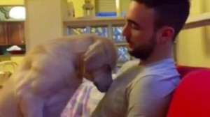 Cea mai mare dovadă că REGERTĂ AMARNIC cele făcute: cum își cere iertare câinele - VIDEO adorabil