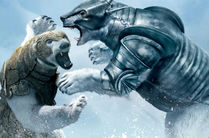 Box adevărat între doi urși! Curţile oamenilor au fost ringul lor! VIDEO VIRAL