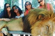 Nu prea le duce capul! Au intrat în cușca leului pentru o poză! Continuarea (VIDEO)
