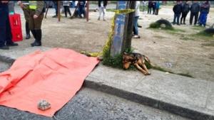 Cea mai tristă reacție pe care o poate avea un câine, după moartea stăpânului... Povestea a frânt inimile oamenilor. Ce a făcut pătrupedul