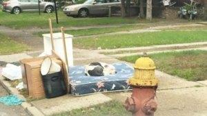 Sfâşietor: S-au mutat în alt oraş şi au lăsat în urmă tot ce nu le mai trebuia: o saltea, mobila veche şi... căţelul. Cât timp i-a aşteptat patrupedul - Galerie Foto