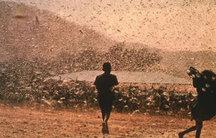 Vine SFÂRŞITUL LUMII? Scene APOCALIPTICE s-au petrecut în Madagascar