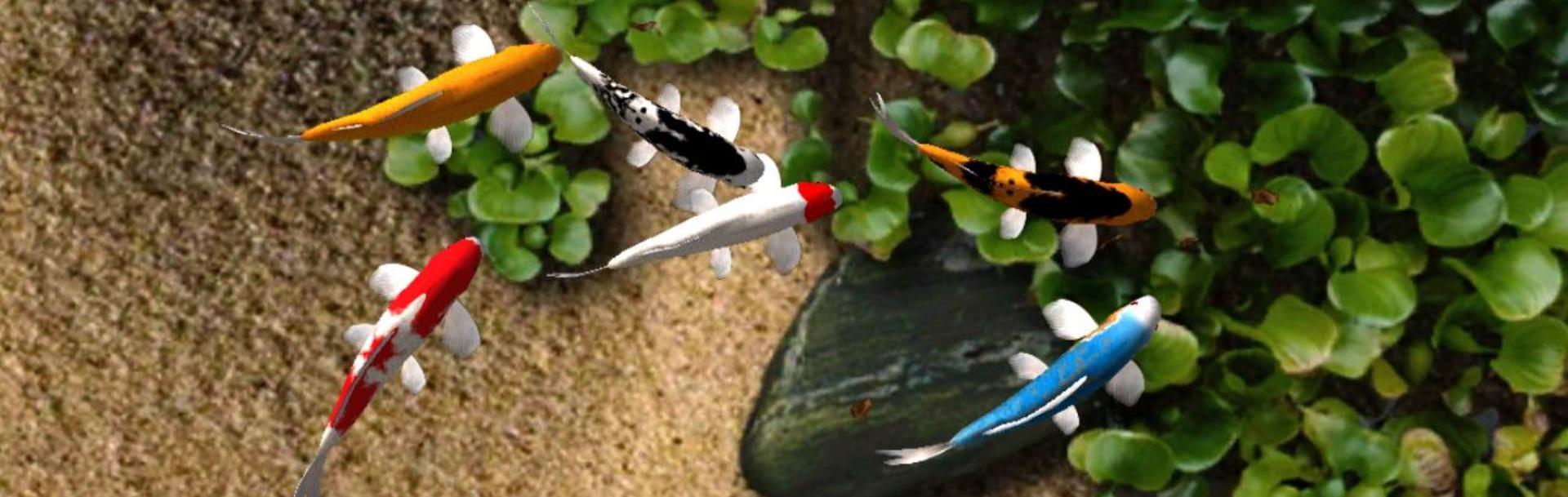 Cum îngrijim iazul cu peşti primăvara?