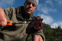Îi mâncăm carnea cu placere, dar EL este adevăratul nostru strămoș!
