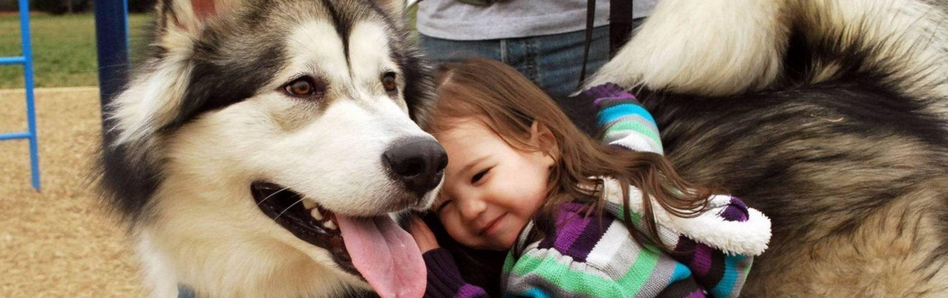 Cele mai bune rase de câini pentru copii