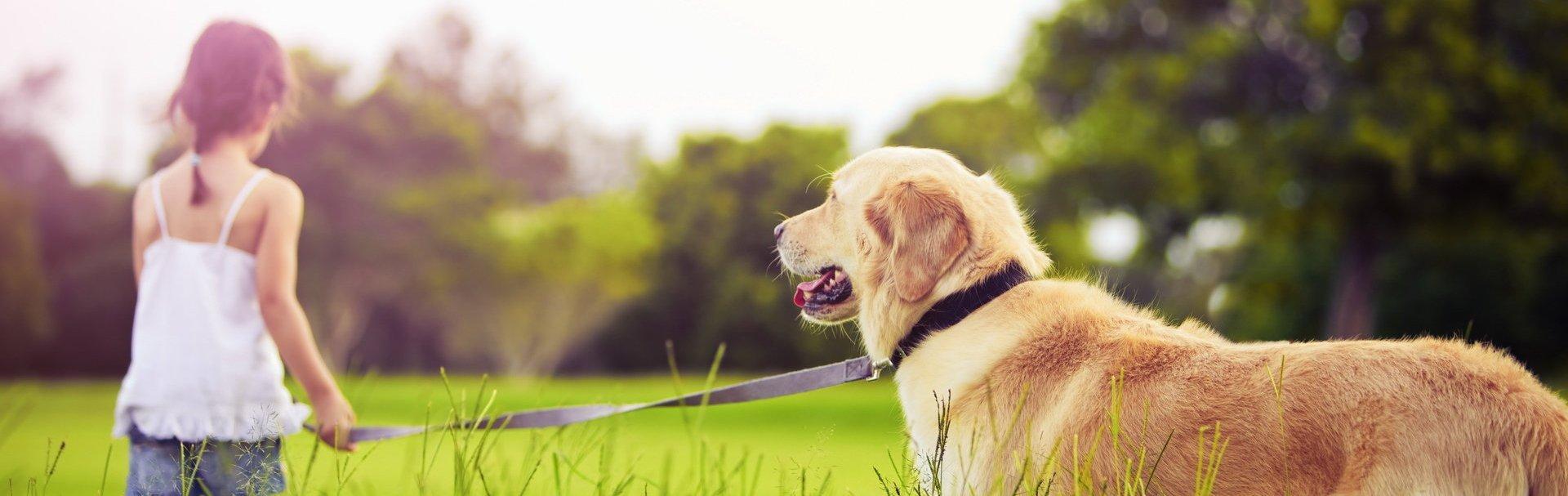 12 motive pentru care fiecare copil ar trebui să crească în compania unui căţel