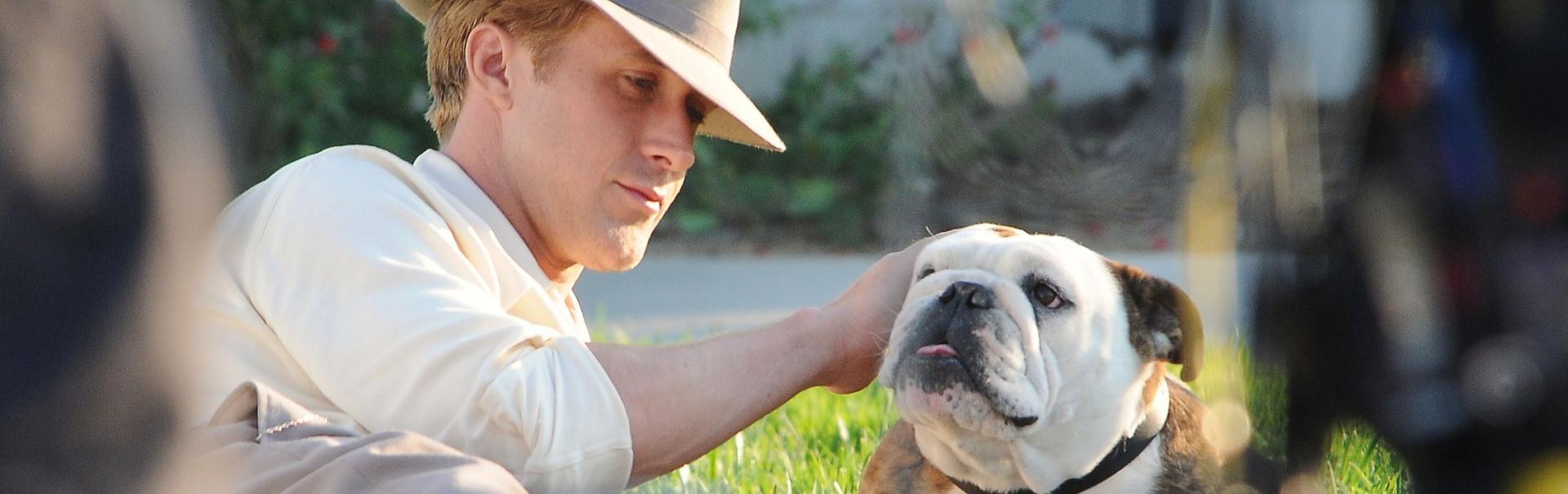 Vedete și animalele de companie: cei mai atrăgători bărbați și câinii lor (Galerie Foto)